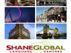 shane global londra dil okulu 8